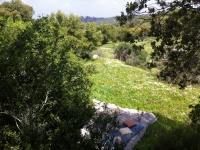 picnick-location